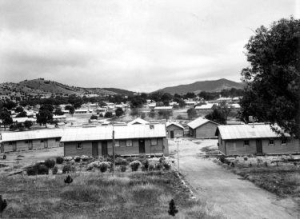 Bonegilla Migrant Camp, 1954
