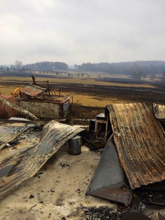effect of bushfire