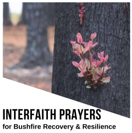 Bushfire Prayers