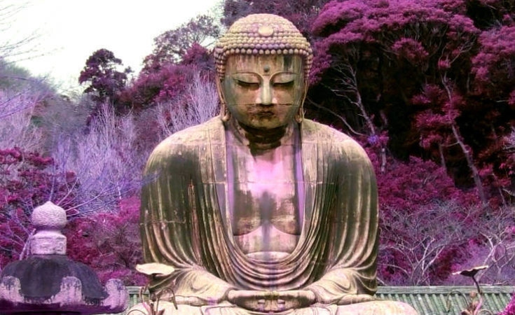 violet stained Buddha statue
