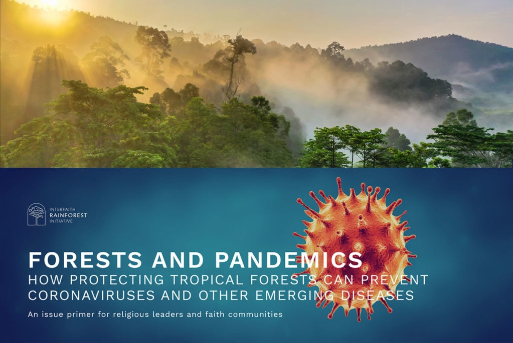 Forests & Pandemics Primer