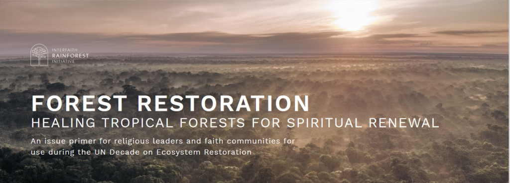 Forest Restoration: Healing Tropical Forests for Spiritual Renewal
